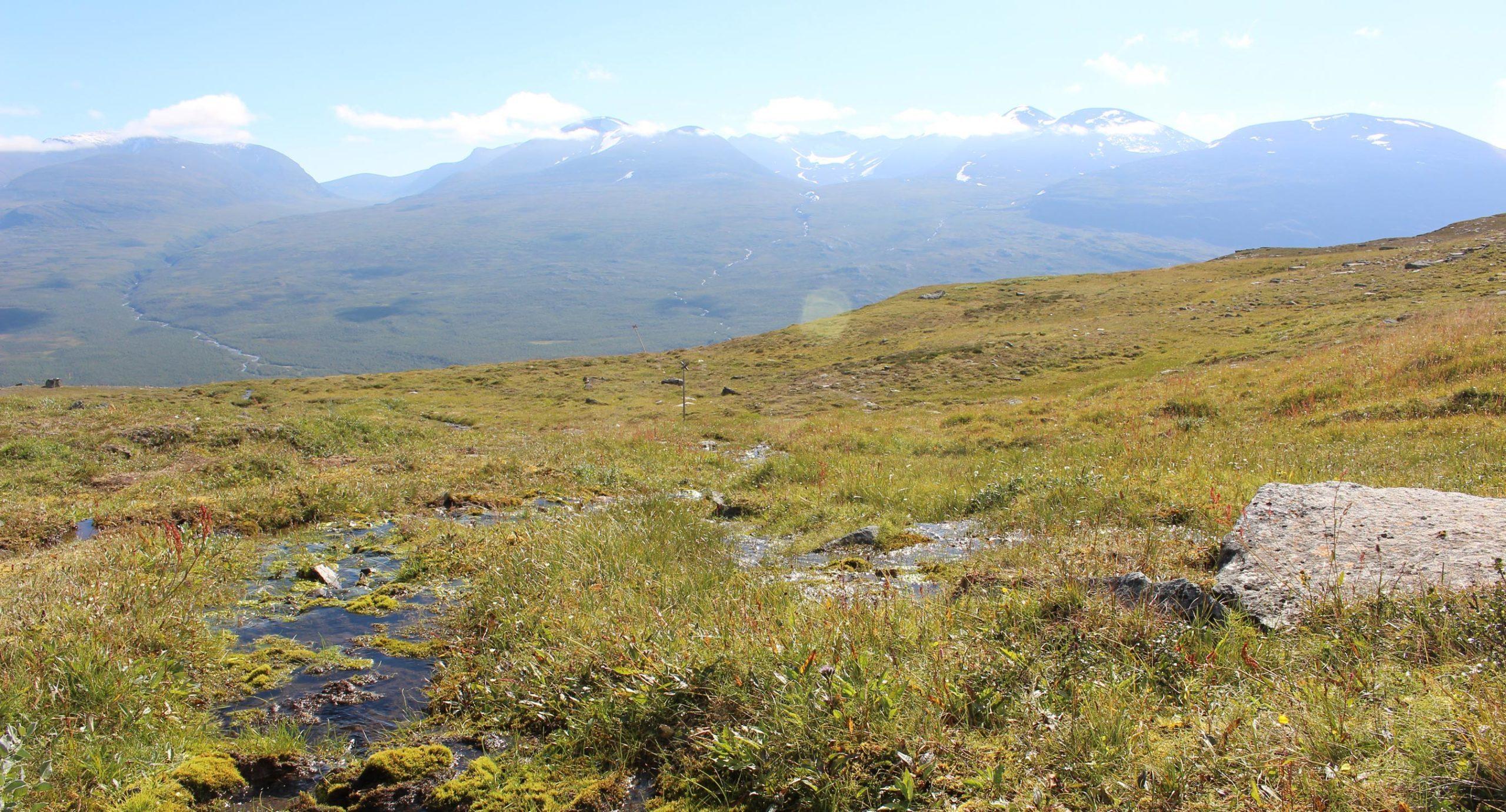 Laporten Tor-nach-Lappland