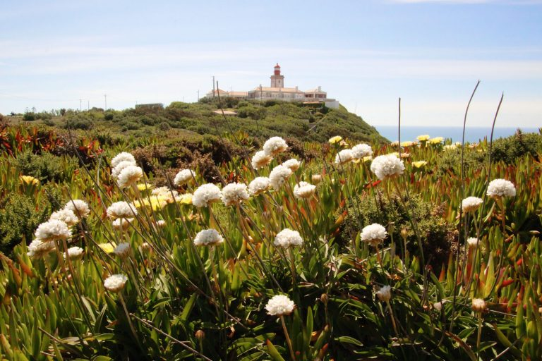 Roadtrip Portugal Leuchtturm Sommer