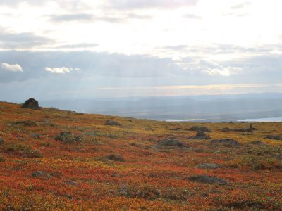 schwedisch Lappland Schweden Dundret Wanderung