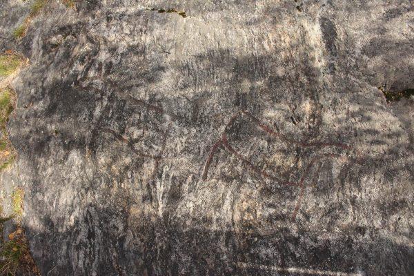 Felsritzungen Steinzeit Schweden