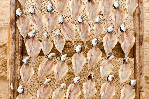 getrockneter-Fisch Portugal Strand