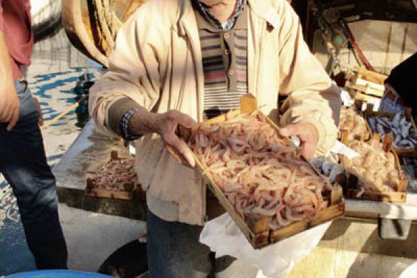 Krabbenverkauf Hafen Sizilien