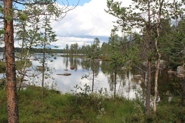 Finnland unberührte-Natur Seenlandschaft