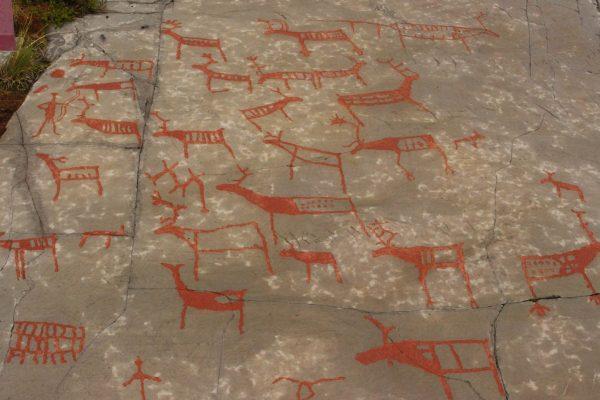 Felsritzungen Felzzeichnungen Alta Norwegen Steinzeit