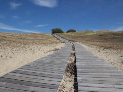 Holzsteg-auf-Dünensand