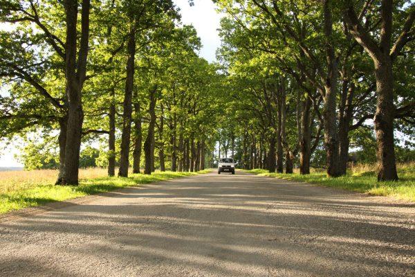Baumalle Campervan Roadtrip the-euroamers