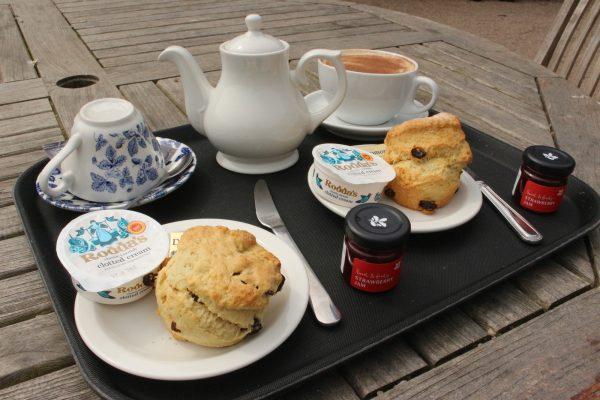 Cream-Tea Nordirland