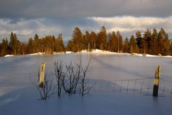 Winterstimmung Winter-in-Schweden