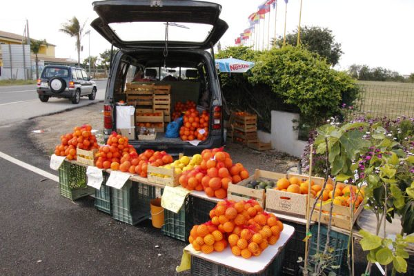 Straßenverkauf Orangen Portugal