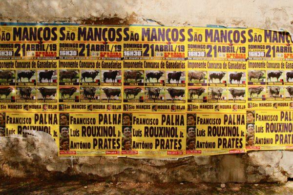 Stierkampf Stier Andalusien