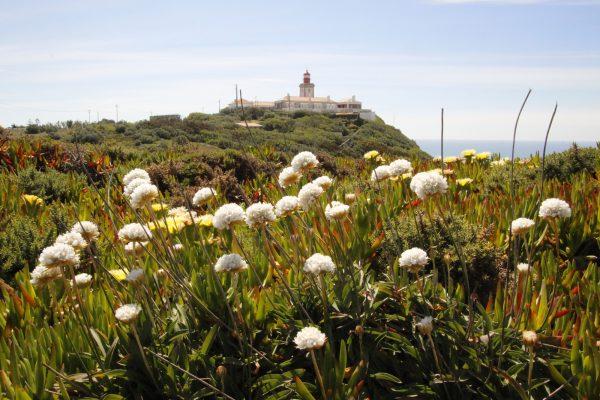 Leuchtturm Algarve Portugal