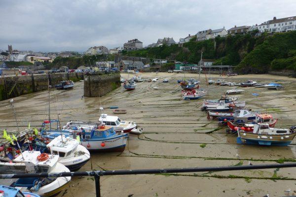 Fischer Hafen Cornwall